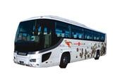ニッコー観光バス